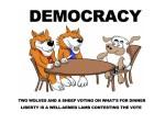 Про демократию