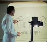 Про фильм «Человеческая многоножка»