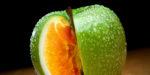 Про ГМО (Генетически-модифицированные организмы)